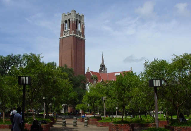 University of Florida ranking