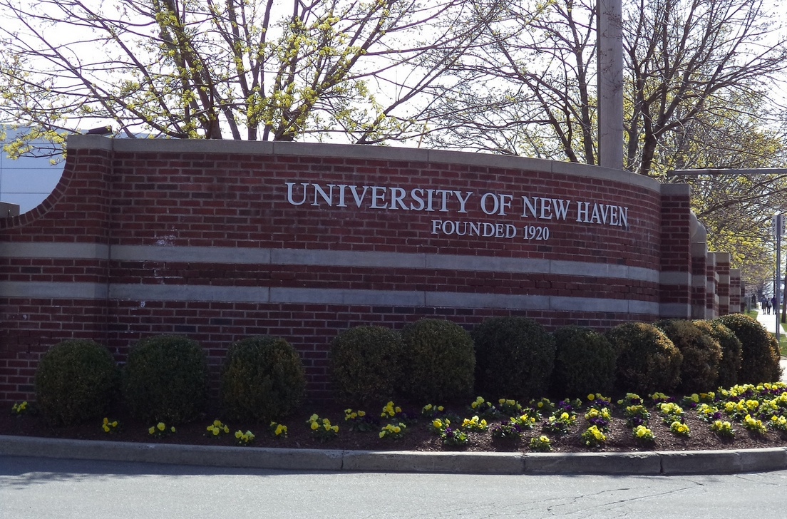 University of New Haven Ranking
